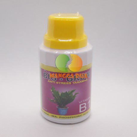 Big Grow 100 ml Original - Anti Stress pada Tanaman