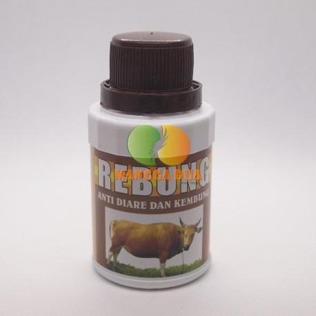 Rebung 125 ml Original - Obat Diare, Kembung, & Mencret pada Sapi Kambing Kuda Domba Kerbau Babi