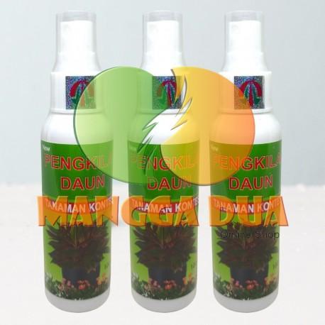 Rainbow Pengkilap Daun Leaf Shine Spray 100ml Original - Semir Pengkilap Daun Mencegah Hama Organik